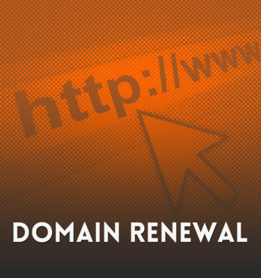 Website Domain Renewal