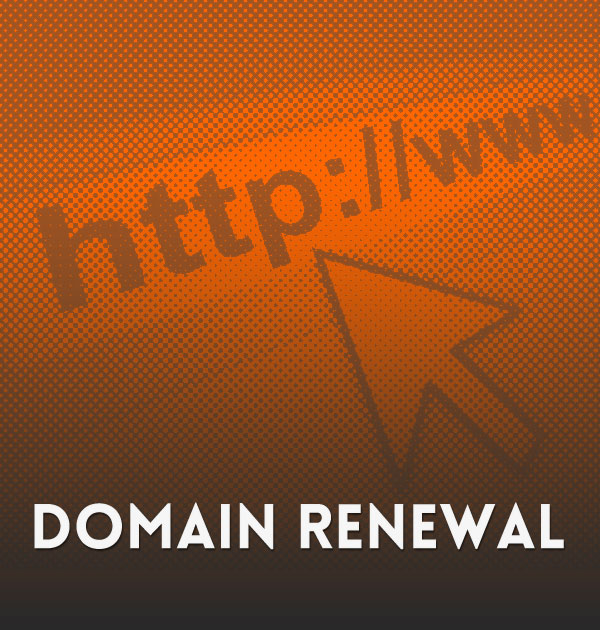 Website Domain Renewal